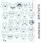 set sketches of 24 dogs... | Shutterstock .eps vector #309176273