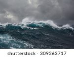 ocean wave in the indian ocean... | Shutterstock . vector #309263717