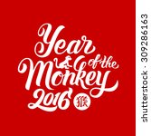 year of the monkey 2016   hand... | Shutterstock .eps vector #309286163