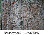 shabby paint on wooden | Shutterstock . vector #309394847