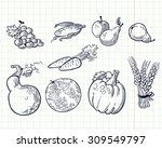 fruits and vegetables set.... | Shutterstock .eps vector #309549797