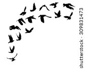 doves and pigeons set for peace ... | Shutterstock . vector #309831473