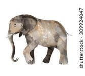 elephant painted watercolor...   Shutterstock . vector #309924047