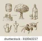 Vector Hand Drawn Olive Oil...