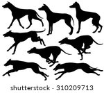 Set Of 8 Editable Vector...