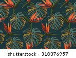 seamless tropical flower  plant ... | Shutterstock . vector #310376957