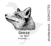 vector fox and goose. white and ... | Shutterstock .eps vector #310412753