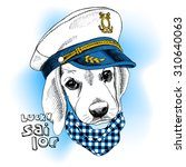 Image Portrait Dog In A Sailor...