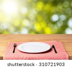 plate. | Shutterstock . vector #310721903