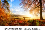 Autumn landscape with the sun...