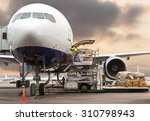loading cargo on the plane in... | Shutterstock . vector #310798943