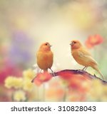 Yellow Birds Perching In The...