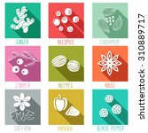 fresh herbs and spices icon set.... | Shutterstock .eps vector #310889717