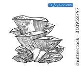 mushrooms set icons  vector... | Shutterstock .eps vector #310953797