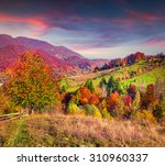 colorful autumn landscape in... | Shutterstock . vector #310960337
