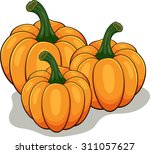 cartoon pumpkin | Shutterstock .eps vector #311057627