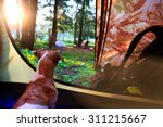 morning mood in the campaign.... | Shutterstock . vector #311215667