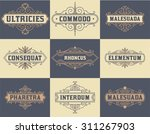 pack of labels and banners | Shutterstock .eps vector #311267903