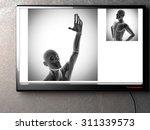 human bones radiography scan. x ... | Shutterstock . vector #311339573