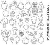 line art flat graphical style... | Shutterstock .eps vector #311612273