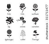 flowers vector  icon set   Shutterstock .eps vector #311711477
