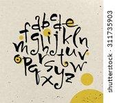 modern vector hand written... | Shutterstock .eps vector #311735903