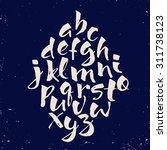 modern vector hand written... | Shutterstock .eps vector #311738123