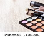 professional makeup palette ... | Shutterstock . vector #311883083