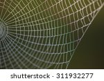 Structure And Pattern That Wil...