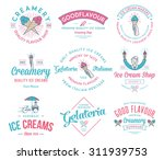 vector ice cream badges and...   Shutterstock .eps vector #311939753