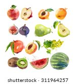watercolor set of fruits | Shutterstock . vector #311964257