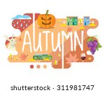 season collection   autumn flat ... | Shutterstock .eps vector #311981747