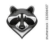 cartoon wild raccoon animal... | Shutterstock .eps vector #312006437