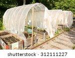 Vegetable Garden And Greenhous...