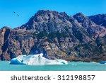 argentina patagonia  emerald... | Shutterstock . vector #312198857