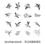 bird and duck chinese style... | Shutterstock .eps vector #312488483