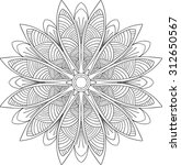 hand drawn background. mandala. ... | Shutterstock .eps vector #312650567