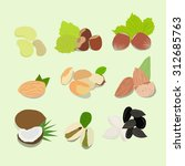 nuts vector collection | Shutterstock .eps vector #312685763