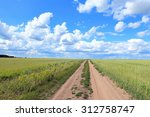 The Road Among Wheat Fields In...