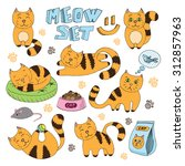 cute cat vector collection in... | Shutterstock .eps vector #312857963
