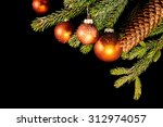 fir branch and cone with... | Shutterstock . vector #312974057