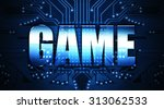 game  concept  the word written ... | Shutterstock . vector #313062533