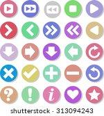 web icon set   Shutterstock .eps vector #313094243