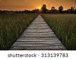 a  beautiful sunset scene along ... | Shutterstock . vector #313139783