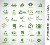 unusual icons set   isolated on ... | Shutterstock .eps vector #313144307