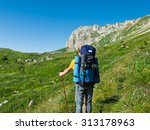 male hiker with backpack goes... | Shutterstock . vector #313178963