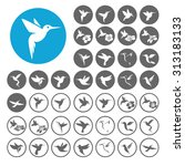 Hummingbird Icons Set....