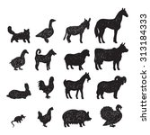 domestic farm animals black... | Shutterstock . vector #313184333