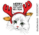 christmas card. cat portrait in ... | Shutterstock .eps vector #313201547