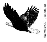 black and white eagle  hand... | Shutterstock .eps vector #313308053